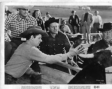Lusty Men Rodeo Cowboys Original 8x10 Photo K6191