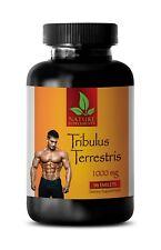 Testosterone Booster - TRIBULUS TERRESTRIS 1000 - Muscle Mass Gain - 90 Tablets