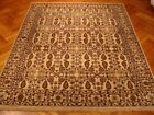 Jaipur Rug 8' x 10' Ivory All-Over Transitional Wool Authentic Handmade Rug