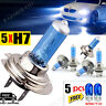 5X H7 T10 499 SUPER WHITE HALOGEN HEADLIGHT BULBS BLUE CAR HEAD LAMPS GLOBES 12v