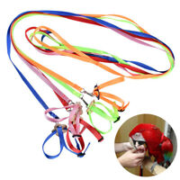 Adjustable Parrot Bird Leash Harness Training Rope Anti Bite Flying Band Outdoor