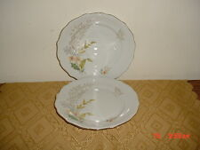 "2-PC AMCREST ""WHEATFIELD"" 7 5/8"" SALAD PLATES/BAVARIA GERMANY/FLORAL/FREE SHIP!"