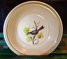 "Nuthatch Bird Branch Saucer Dish Arabia Suomi Finlandia Finland Hand Painted 5"""