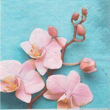 2 Serviettes en papier Fleur Orchidée - Paper Napkins Rose Orchid