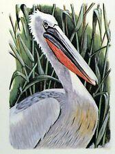 ROMANIA PELLICANO WWF Bird PANEL PASTIGLIA Primo Giorno 1° FDC 3233
