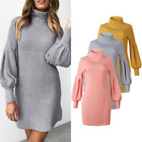 Womens Casual Knitted Pullover Sexy Warm Turtleneck Long Sleeve Sweater Dress