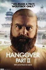 Hangover 2 - Alan Poster