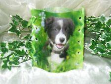1 Deko Windlicht Hund in Wiese Tischlicht Mitbringsel Geschenkidee