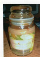 Gold Canyon Jar candle of Warm Vanilla Sugar 5 oz. Never burnt.
