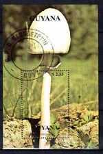 Champignons Guyane (15) bloc oblitéré