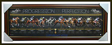 Melbourne Cup Champions Progression of Perfection print Framed Makybe Diva L/E