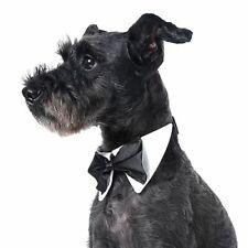Bowtie Pet Necktie Dog Collar Choke Straps Cord Cat Animals Neckerchief Grooming