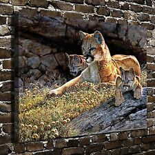"""24""""x32""""Young Mother Lion HD Canvas Print 24""""x32"""" Home Decor Paintings Wall Art"""