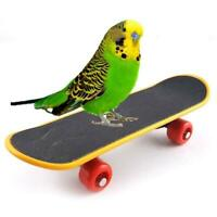 Hot Parrot Intelligence Toy Mini Training Skateboard Parakeet For Budgies S M4S1