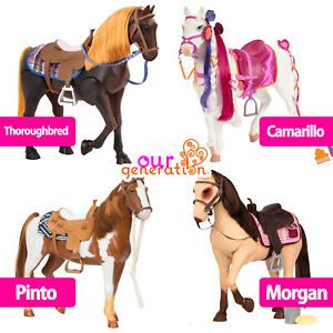 OUR GENERATION HORSE SELECTION Thoroughbred | Camarillo | Pinto Trail | Morgan
