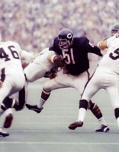 DICK BUTKUS  ALLTIME BEARS LEGEND TAKES ON THE STEELERS COLOR 8X10