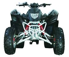 Adly Road Legal Quad Sports 300XS with Nerfs