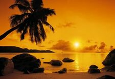Wall Mural photo Wallpaper Beach Sunset Palms & orange sky Paradise + badge