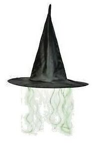 Witches Hat With Hair