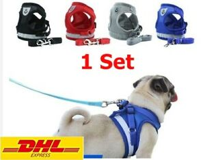 Vest Winter Dog Cat Harness with Leash Adjustable Walking Breathable Pet Puppy