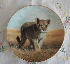 Young Explorer Plate Small Wonder Of The Wild