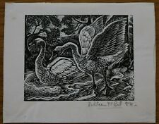 STUDY OF SWANS BY KATHLEEN MARY BELL