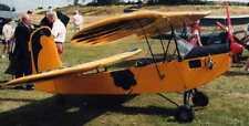Bifly Flying Flea French Lascaud Airplane Kiln Dry Wood Model Replica Large New
