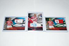 Topps Premier Gold 2014 Steve Sidwell Autograph Card, X2 Fibers Relic Card