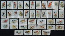 More details for birds 1921 godfrey phillips cigarette silks including various scarce