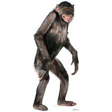 CHIMPANZEE CARDBOARD CUTOUT Standee Standup Poster Prop Animal Monkey FREE SHIP