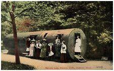 Spruce Log Palmer Park Detroit Michigan 1912 Posted Vintage Postcard