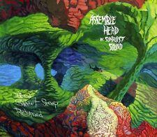 Assemble Head in Sun - When Sweet Sleep Returned [New CD]
