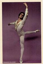 Fernando Bujones 1979≈Sleeping Beauty≈American Ballet Theater≈Dancer POSTCARD