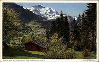 Wengen Kanton Bern Schweiz Color AK  ~1920/30 Blick auf die Jungfrau ungelaufen