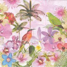 2 Serviettes en papier Oiseau Tropical Perruche Paper Napkins Parakeet