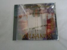 """All Because of You by Wyleaner (CD, Feb-2003, """"SOTH"""" Records)"""