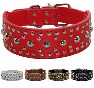 5 cm Wide Leather Rivet Studded Medium Large Dog Collars for Pitbull Terrier