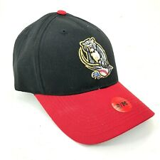 Sacramento River Cats Adjustable Outdoor Cap Strapback Hat Curved Brim Youth Sz