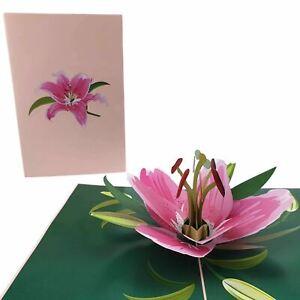 Pink Lily Flower 3d Pop Up Card