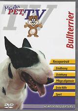 Bullterrier - Meister PETz TV *DVD*NEU* Ratgeber - Hund