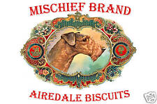 Mischief Brand Airedale Tin & Cookies