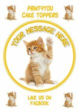 ND2 Cute ginger kitten personalised round birthday cake topper icing