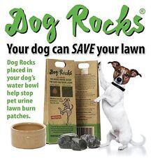 ROCCE per cane 200g-protezione PRATO bruciare (confezione da 1 x 200g)