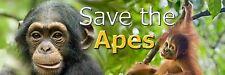 SAVE THE APES Beautiful Chimpanzee and Orangutan Photo Sticker