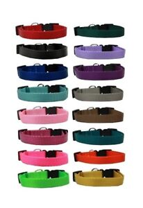 Nylon Dog Collar Bulk Packs Assorted Colors Choose Size & Amount Rescue Shelter