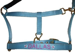 Personalised Embroidered Padded Headcollar with Flower Motifs. All Sizes
