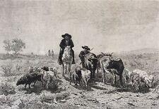 Rosa Bonheur (1822 1899) Berger moutons Hélio gravée par Greux milieux circa XIX