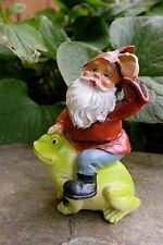 Miniature Gnome Riding On A Frog Village Garden Resin Gnomeland Gnomes 3.25""