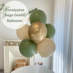 "Deluxe Eucalyptus Balloons Sage Green 10"" Birthday Party Baby Shower Decor"