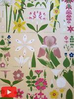 Owen Jones c.1880 Ornament lot x 10 old prints leaves plants botanicals floral